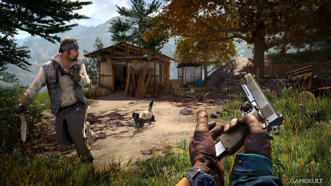 [Test] Far cry 4
